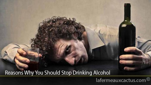 Reasons Why You Should Stop Drinking Alcohol