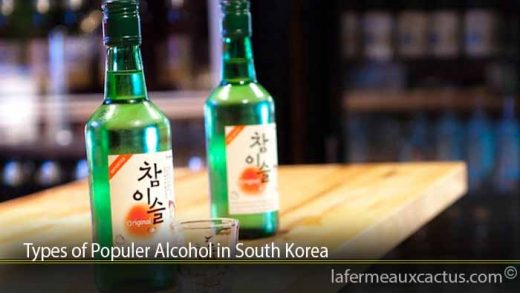 Types of Populer Alcohol in South Korea